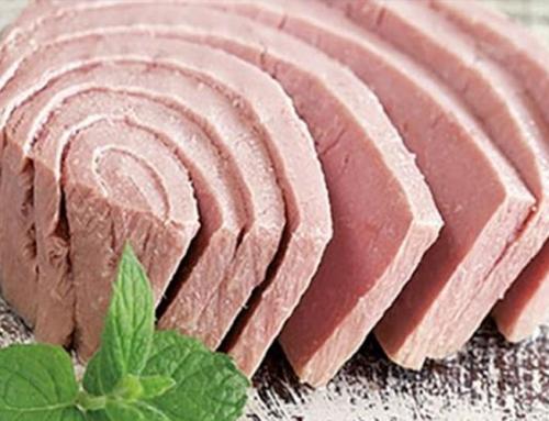 History of Tuna